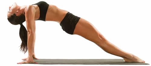 Programma di Allenamento Fitness Wellness 2017