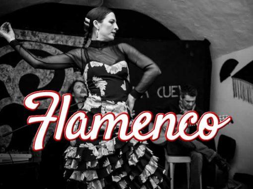 Corso di Flamenco